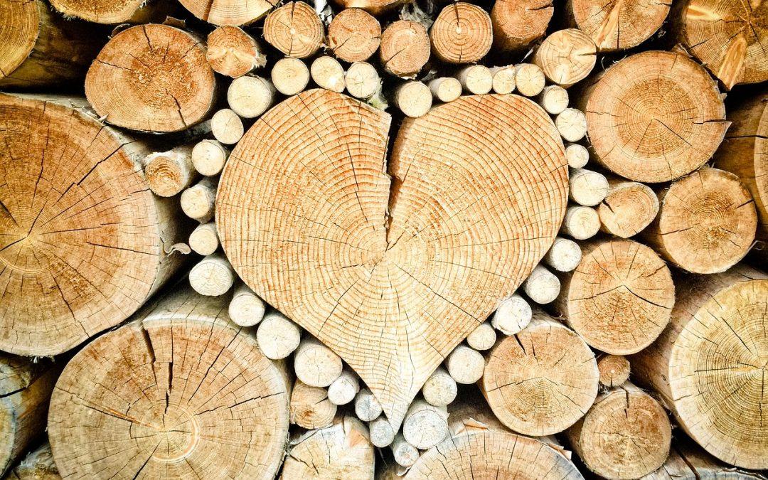 Magyar fafajták és azok felhasználása