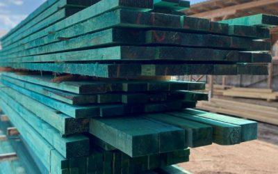Miért nem volt szükség régen a favédőszerekre, és miért elengedhetetlenek ma?